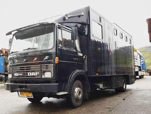 грузовик для перевозки лошадей DAF 1100 TURBO 1985