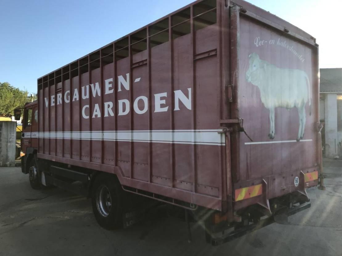 closed box truck > 7.5 t MAN 19.463 F2000 **BELGIAN TRUCK-CAMION BELGE** 1997